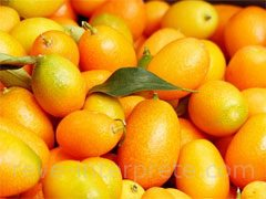 reve de kumquat - interpretation des reves